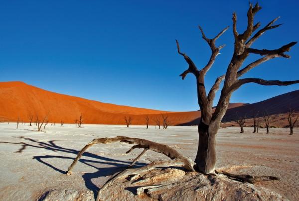 Themenabend – Namibia