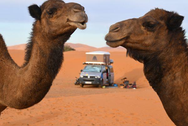 Marokko – Termin wird verschoben